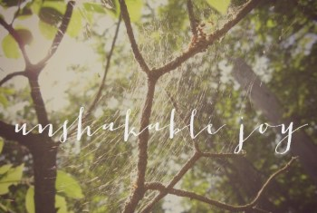 Pursuing Unshakable Joy in the Midst of Infertility
