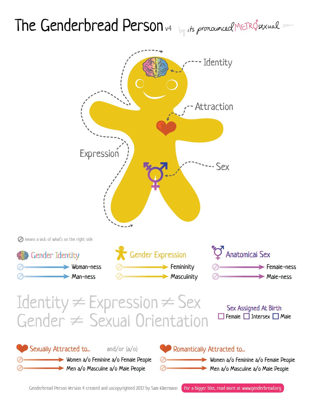 The Genderbread Person V4