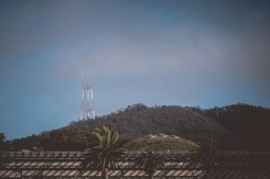 The Sutro Tower and the top of Academy of Science building.