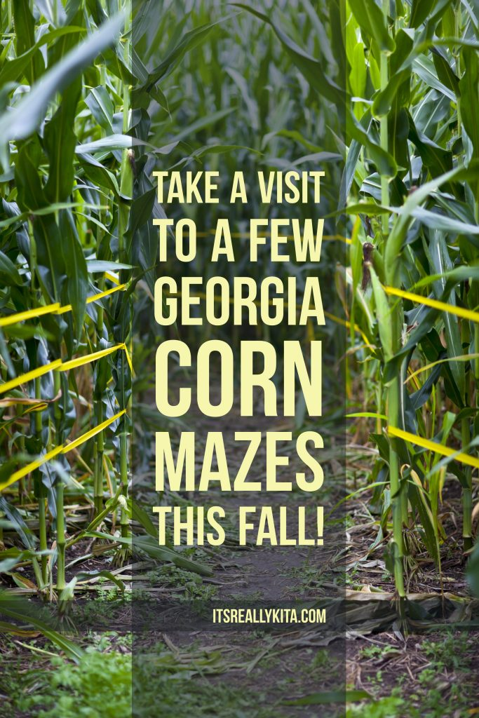 Take a visit to a few Georgia corn mazes this fall!