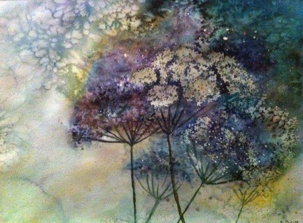 Hogweed Watercolour
