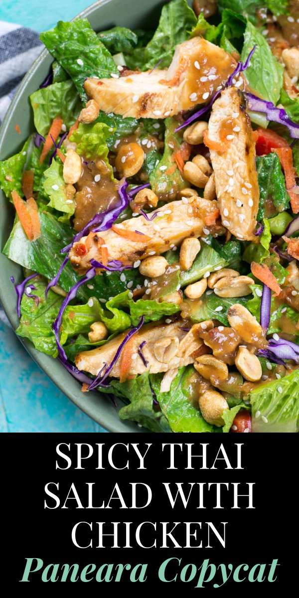 Spicy Thai Salad with Chicken is a Panera favorite you can make at home now! This delicious Thai Chili Vinaigrette peanut sauce is the star of this salad and it will become your new favorite dressing! #paneracopycat #thaichickensalad #spicythaisalad #healthylunch