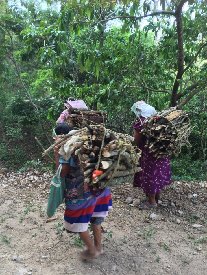 Ladies walking down the mountain with wood on their backs.