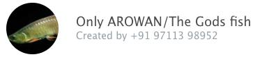 Only AROWN/The gods fish