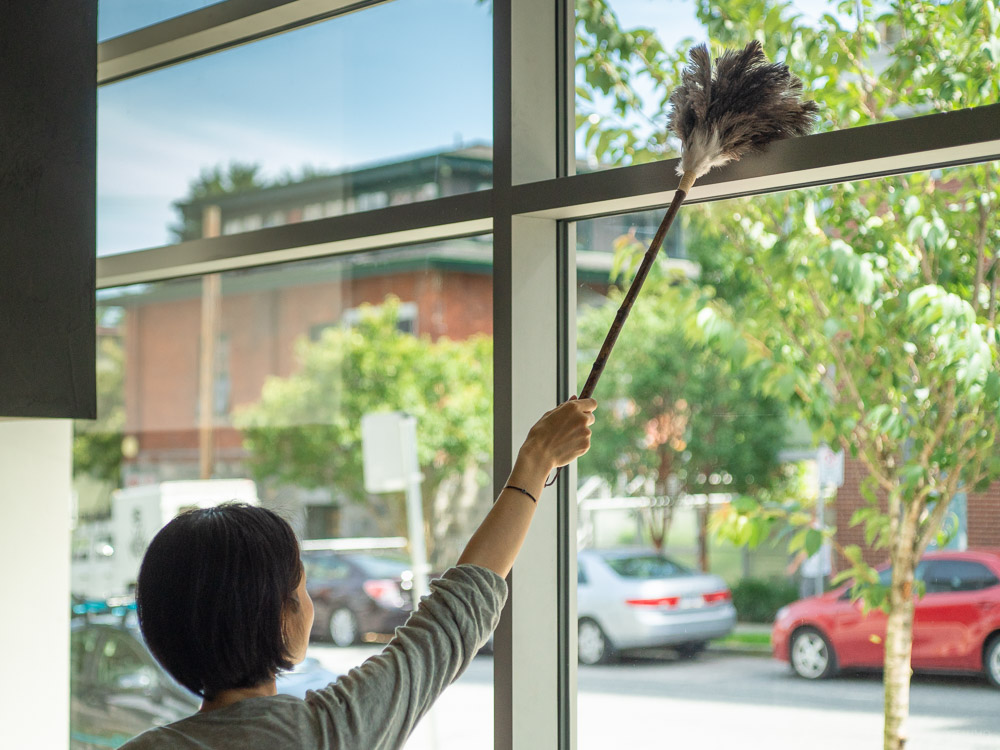 Ostrich Feather Duster - L