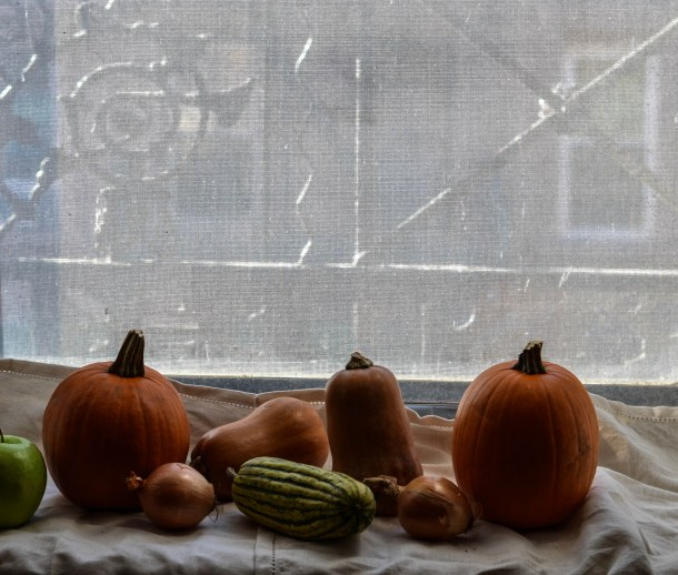 Fall Squash in nyc window - What's Cooking_
