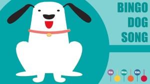 BINGO DOG SONG - ItsyBitsyKids Youtube