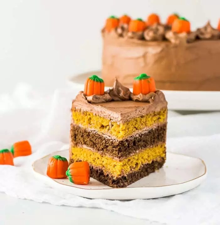 slice of chocolate pumpkin cake on a plate with the rest of the cake in the background