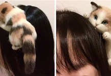 japanese kitty headband