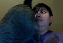 hilarious-cat-struggles-feat