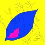 【愉快な生き物図鑑】マジャグモ – ミスターノンデリカシー生物ついに降臨!