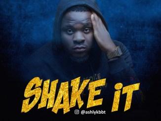 Ashly K - Shake It