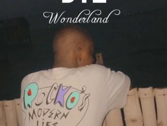 DTL - Wonderland (Omah Lay Refix)