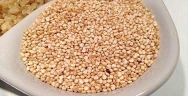 quinoa-quinua-itusers