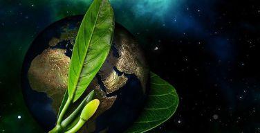 SAP-Colombia-reduce-su-huella-de-carbono