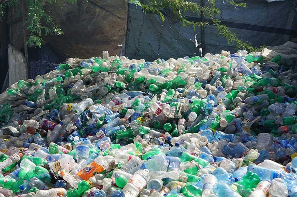 HP-amplía-esfuerzos-ecológicos-en-Haití