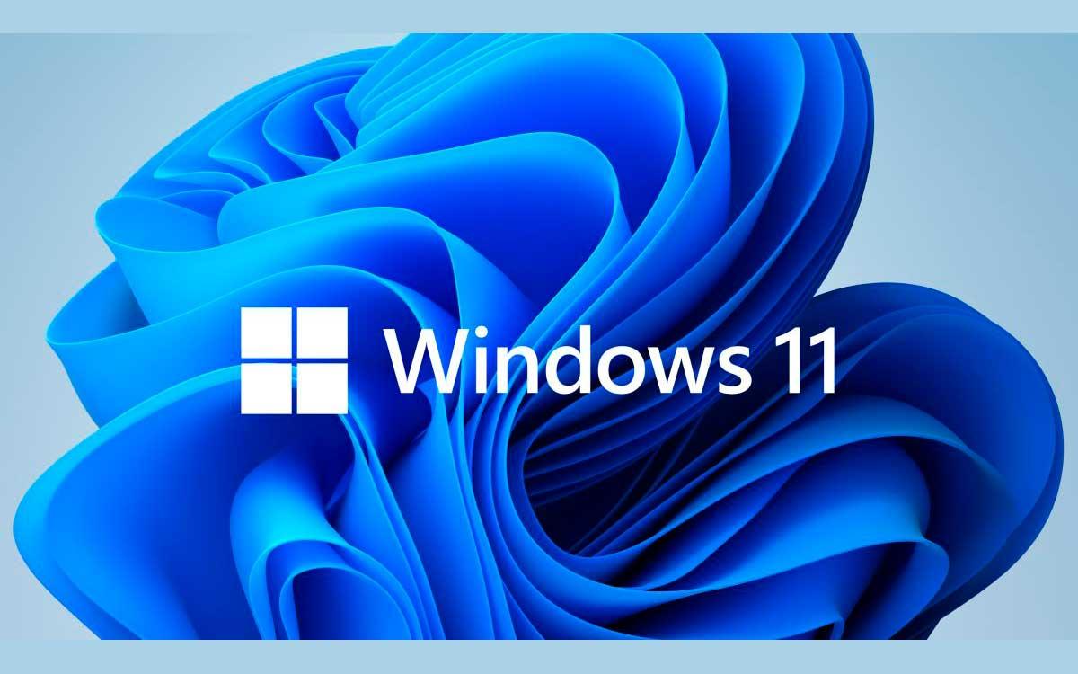 5-aplicaciones-para-windows-11-deberias-descargar-ahora-mismo