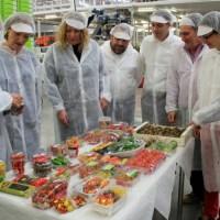 Las trabajadoras y trabajadores del sector hortofrutícola denuncian la precariedad de sus condiciones de trabajo