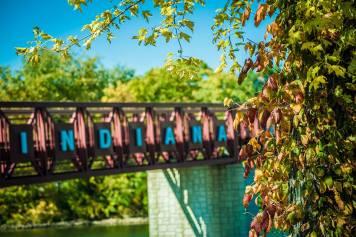 Fall Foliage Spread