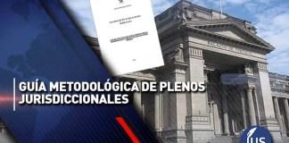 Guía metodológica de plenos jurisdiccionales