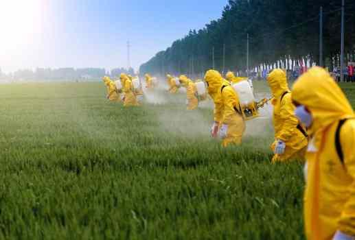 Aplicação de agrotóxicos em plantações
