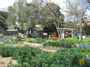 garden wide view