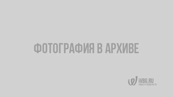 Как хорошо вы знаете флаги стран мира. Тест ivbg.ru ...