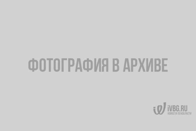 """În apariția calendarelor de vacanță """"de vină"""". Foto: KP.UA."""