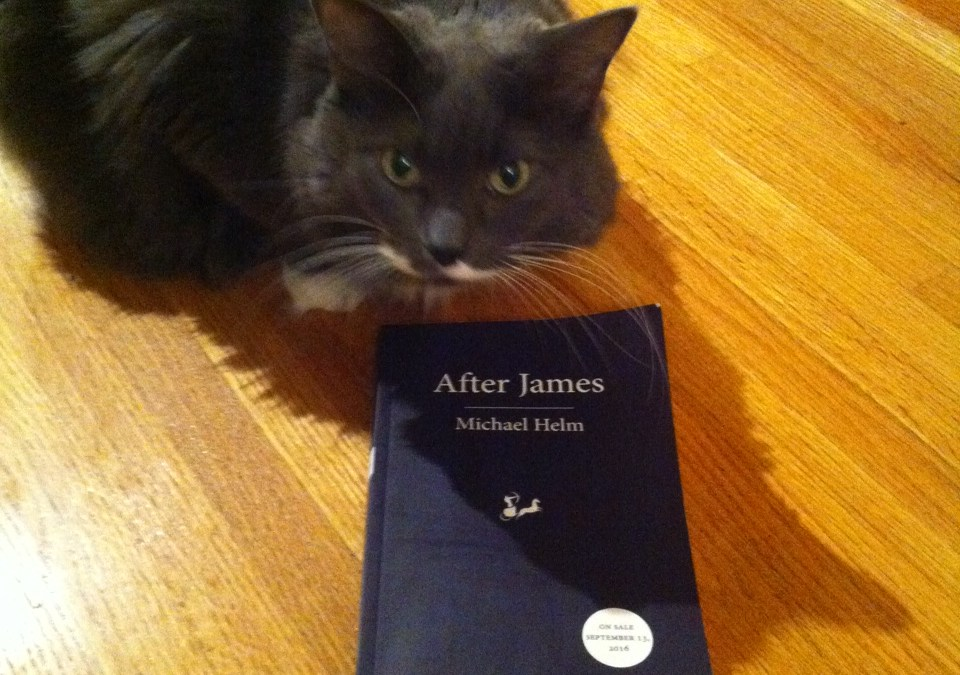 Book Review: After James by Michael Helm