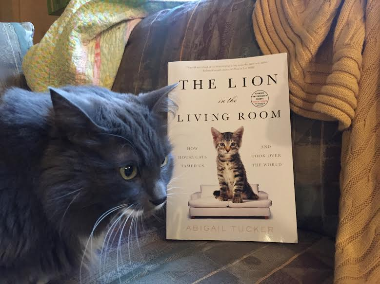 Book Review The Lion In The Living Room By Abigail Tucker I 39 Ve Read This