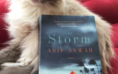 Book Review: The Storm by Arif Anwar