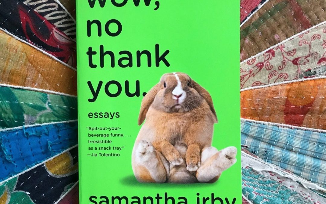 Cover image of Wow No Thank You by Samantha Irby
