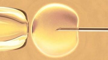 Οκτώ ερωτήσεις για την εξωσωματική γονιμοποίηση