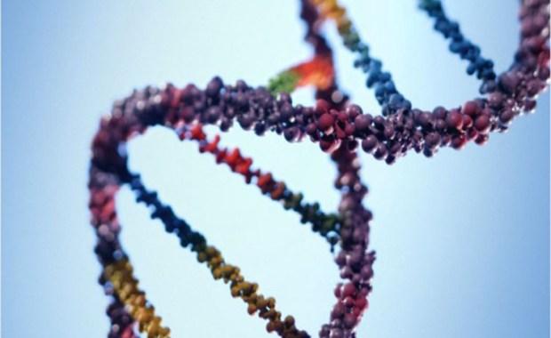 genetiki-apostasi