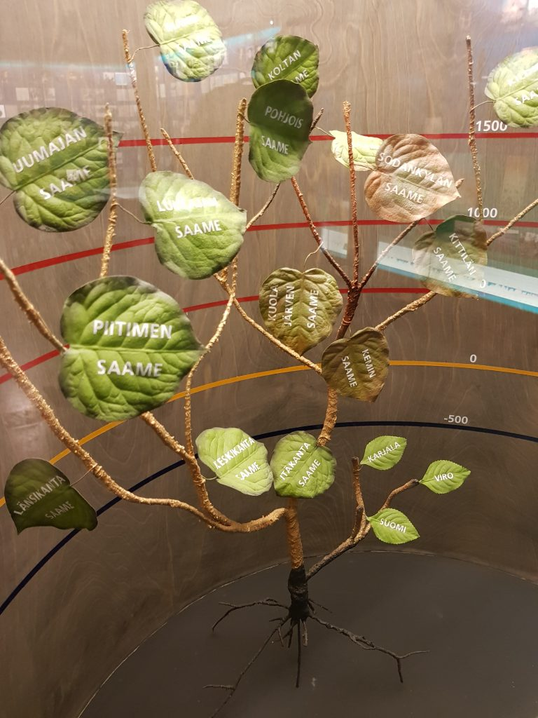 albero dei nomi finlandesi al museo siida