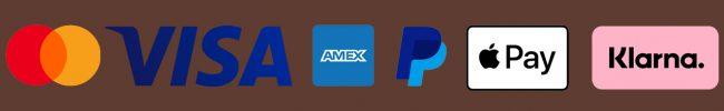 logo-payment2