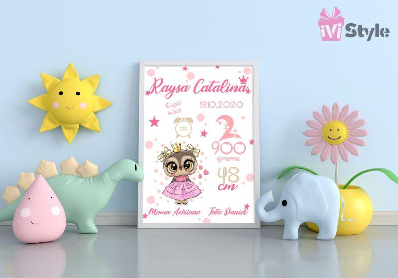 Tablou Personalizat A4 Bufnita cu Rochita Raysa