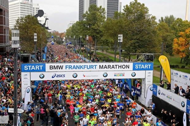 StartWide-Frankfurt14
