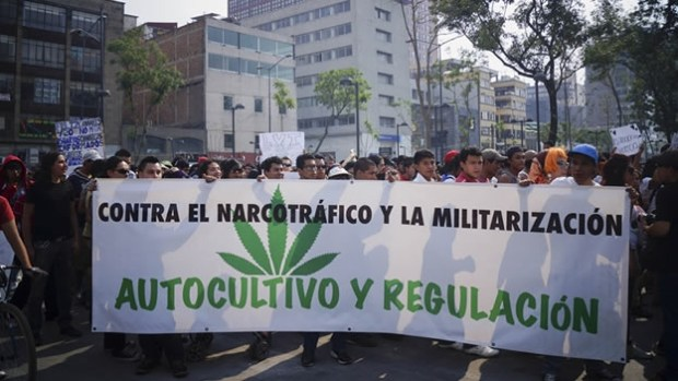 marihuana-legalizacion