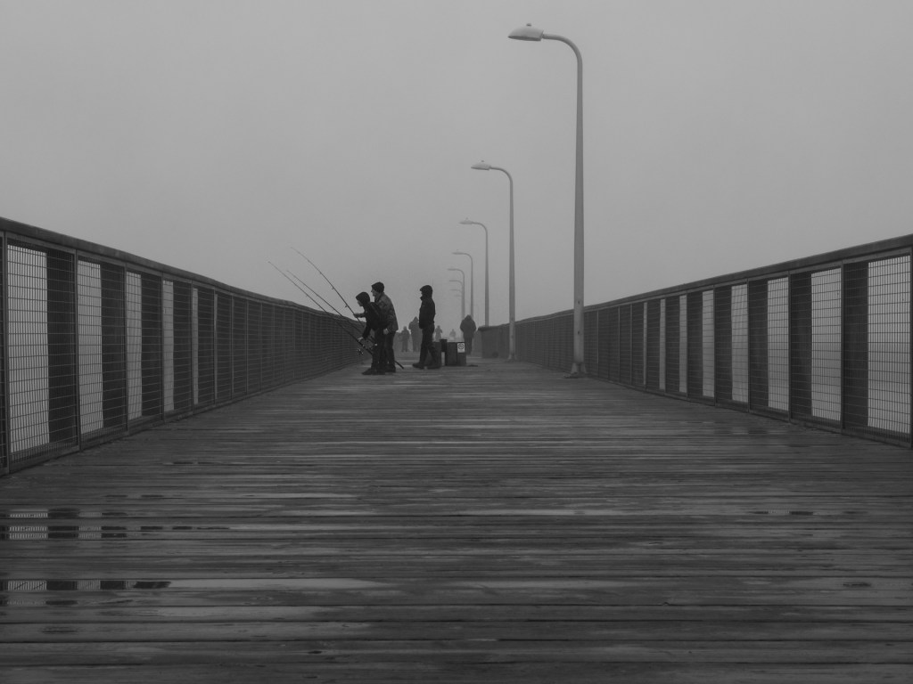 Gone Fishing in the fog