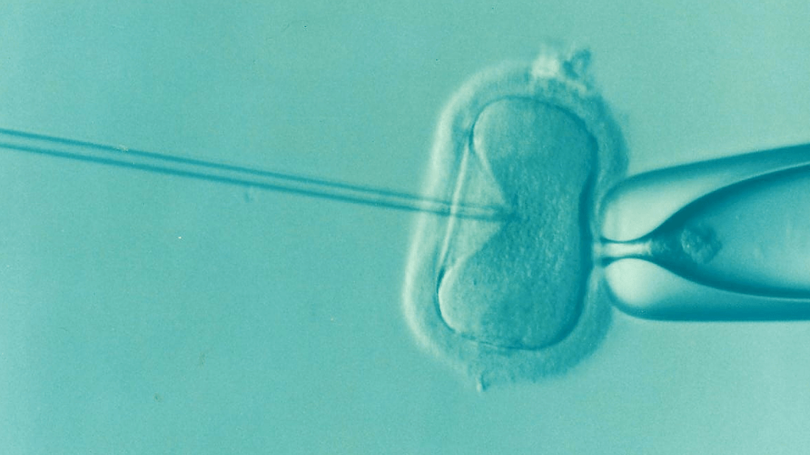 First CRISPR babies born in China | Is that a good thing?