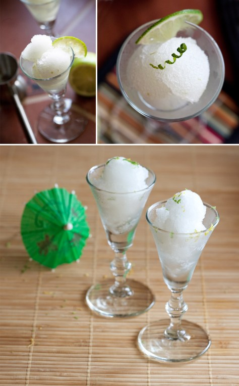 The Ivory Hut: Gin and Tonic Sorbet (You Heard Me) data-recalc-dims=