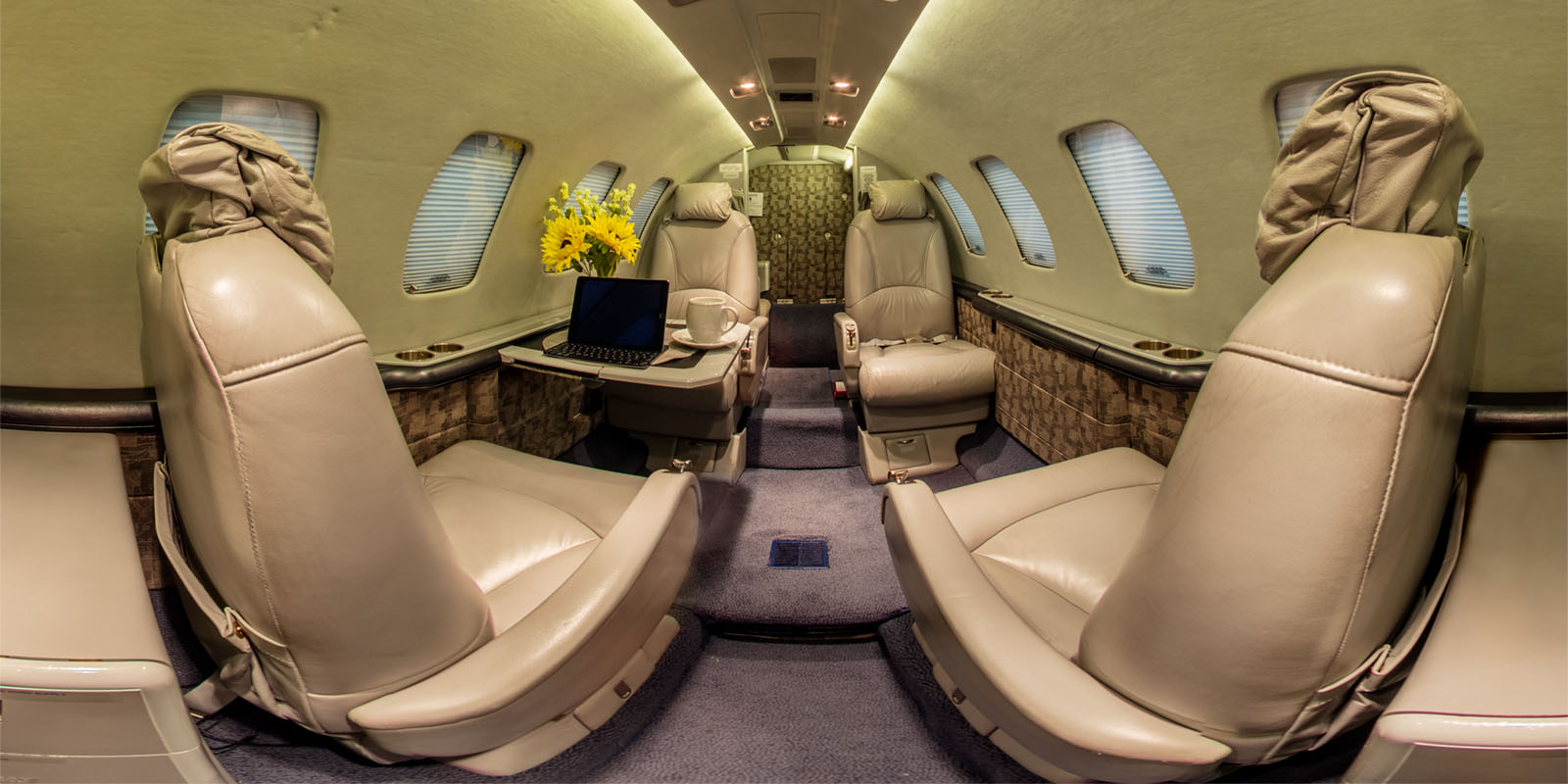 Cessna Citation 360 Panorama by Snowforest