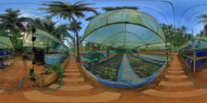 Mampuzha Farm Tourism1