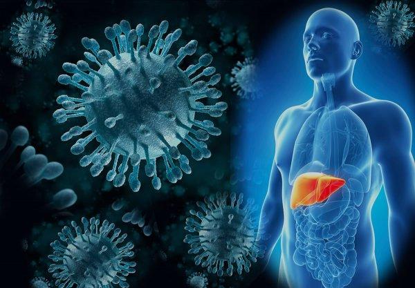 Лечение гепатита С возможно современными препаратами