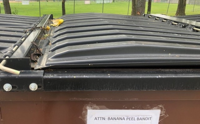 Image of garbage dumpster with banana peels on lids