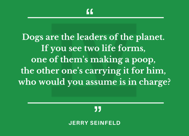 Jerry Seinfeld quote about dogs, humans & aliens