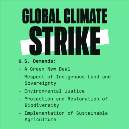 Graphic list of youth global climate strike demands