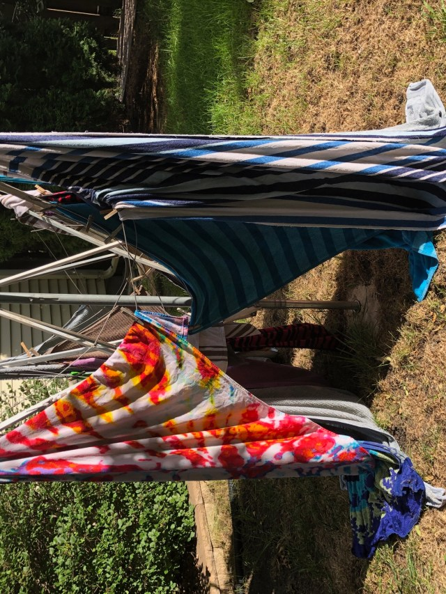 Portrait Picture of a collapsed clothesline for first-world problems post