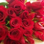 100本の赤いバラ・プレゼントをマツコがばっさり!